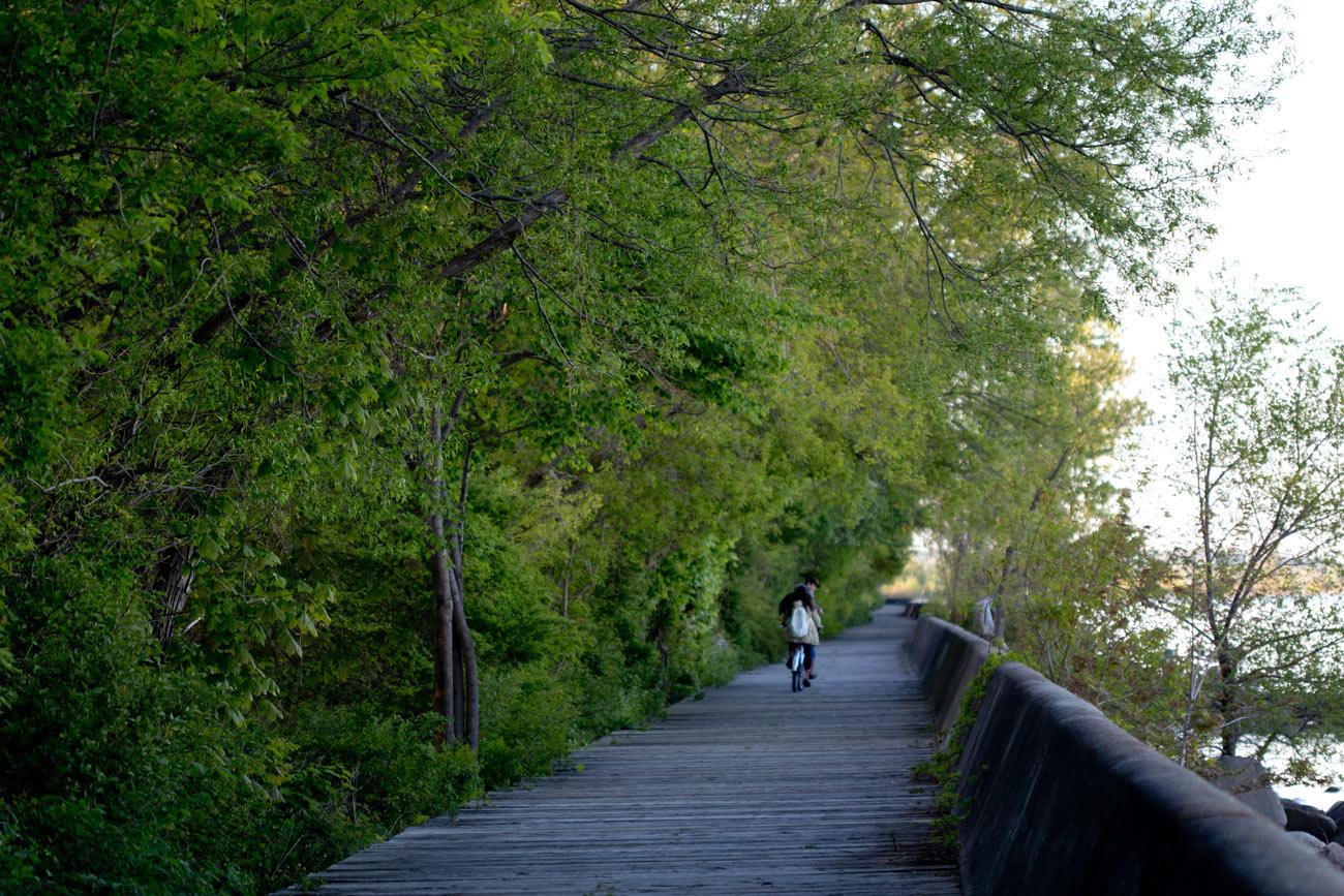 Camino, amor y paz