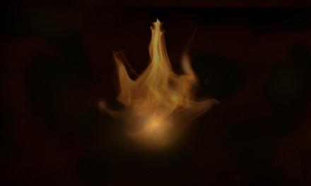 Fuego Encinta