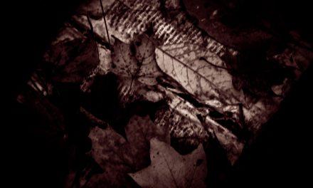 Book-Eating Leaves